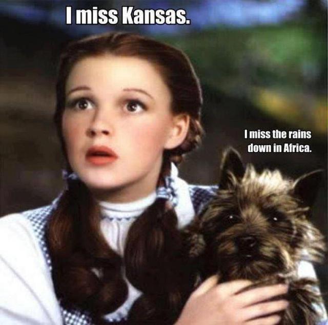 Poor Toto