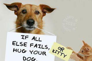 If All Else Fails Hug Your Dog or Kitty