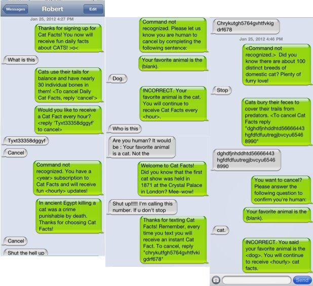 How to Prank People via Text Message