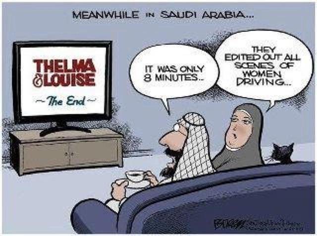 Thelma and Louise in 8 Minutes