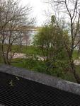 Lake Shore